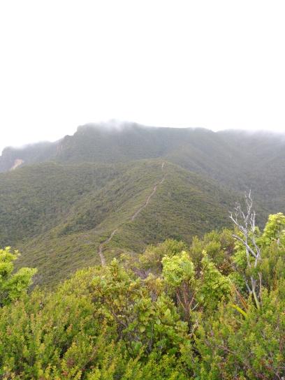 Haratoanga