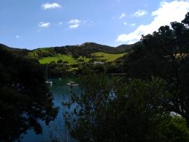 Port Fitzroy